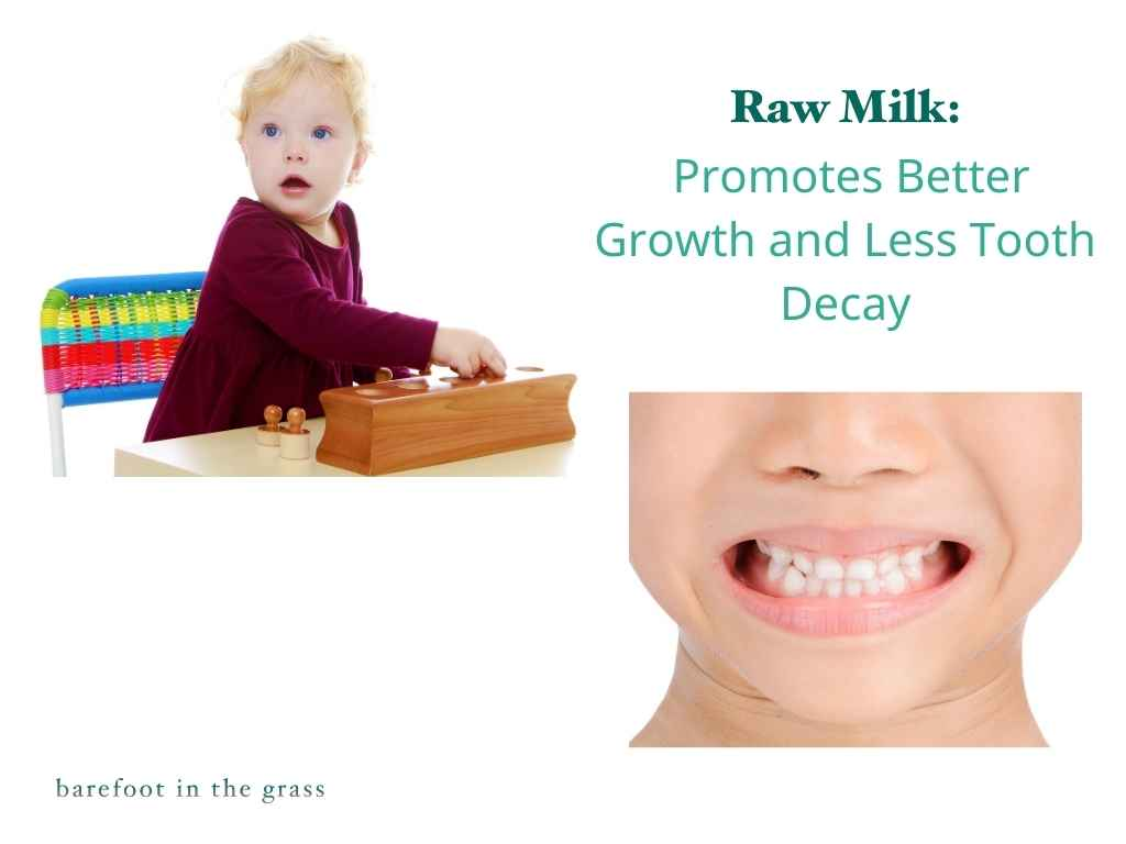 Raw milk promotes growth and prevents tooth decay.