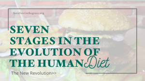 Stages of the Human Diet
